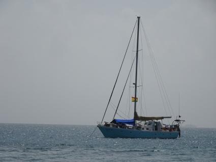 Unser Boot: Wild Card: Platz für 16 Leute + 3 Besatzung + 3 Mo
